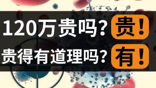 120万一针癌细胞清零!CAR-T贵得有道理吗?(后附基金经理对于医药板块Q&A环节)