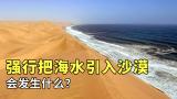 把海水引入沙漠灌溉会发生什么?看中东强行引水的后果就知道了!
