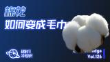 棉花,如何变成毛巾?