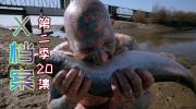 【奥雷】丑陋怪物大闹畸形人马戏团 只因泄愤就将他人的性命夺走《X档案》第二季20