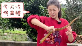 小漆做菜:第一次做黄鳝,过程很残忍,我含泪吃了两大碗米饭!
