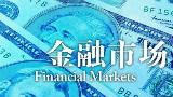 【耶鲁大学公开课:Financial Markets】26劳伦斯·萨默斯应对金融危机并从中学习(二)
