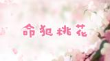 【独家】命犯桃花【洛蒂】