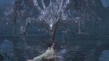 【Manse漫色玩家】黑暗之魂3米尔伍德大弓攻略BOSS吞噬黑暗的米狄尔