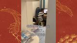 来自疯狂小杨哥忠诚粉丝的剪辑裁剪第37期(视频来自疯狂小杨哥的日常搞笑视频)