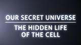 BBC.细胞内部之旅.Secret.Universe.Journey.Inside.The.Cell
