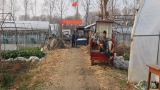 农村小伙果蔬创业分享宝贵经验,让你少走弯路多赚钱!