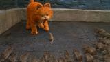 猫咪好心放过一只老鼠,老鼠带着兄弟回来报恩,一部动物喜剧电影