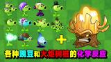 盘点:11个豌豆和火炬树桩的化学反应!