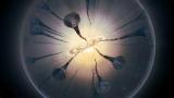 宇宙被大量的暗物质占据,不可告人的秘密超科学家想象!
